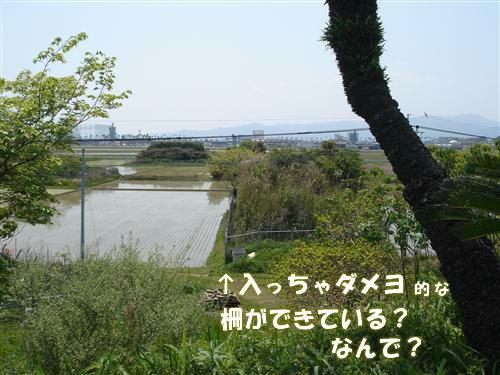 20100418~ 003_R.jpg