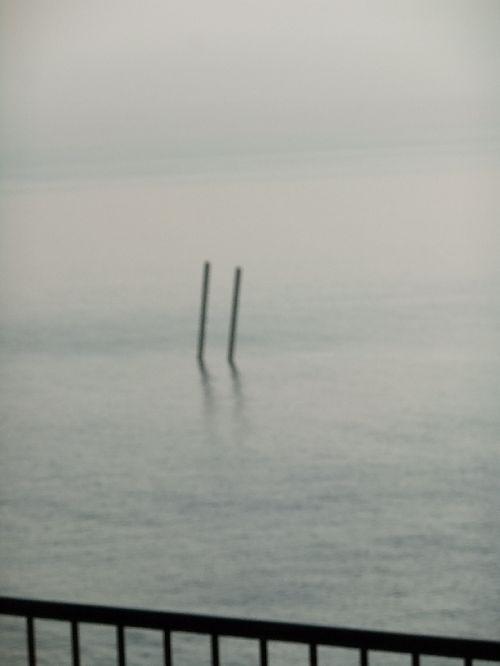 2011~a492.JPG